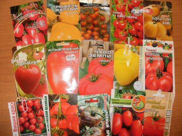 среднеспелые томаты