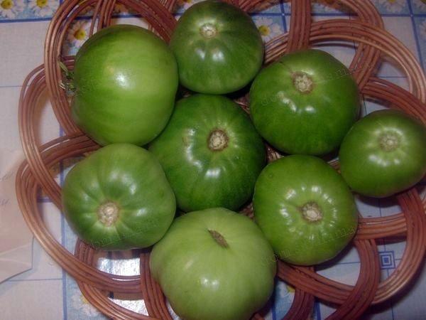 сорт помидоров
