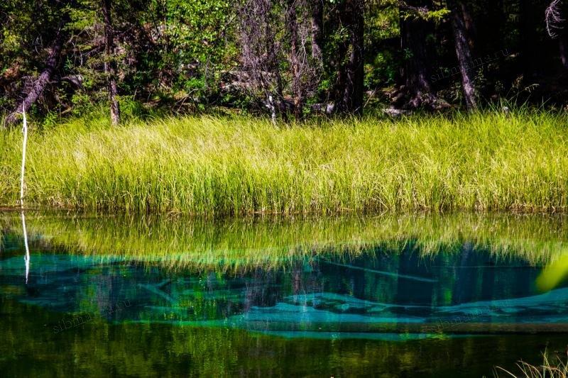 Гейзерное озеро, Горный Алтай