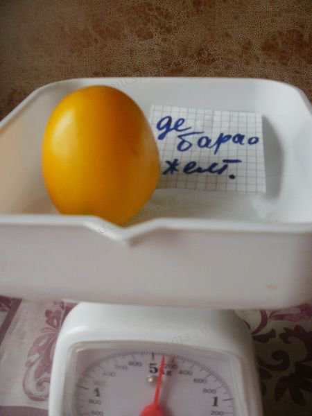 Сорт желтых помидор «Золотой король»