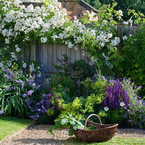 Цветы в ландшафтном дизайне сада