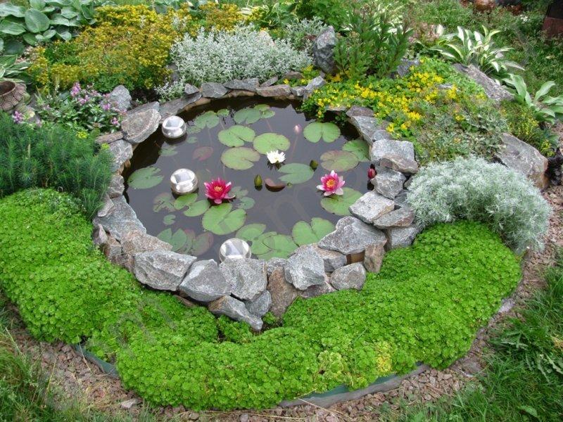 Декоративный пруд на даче своими руками фото 346